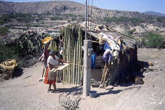 Uaeh Mexico