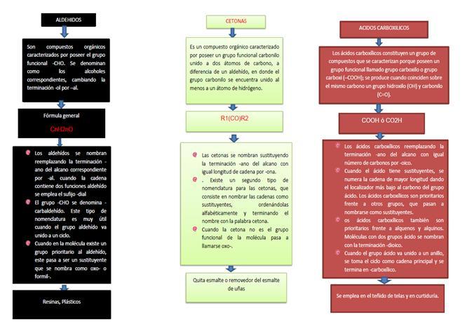 caracter u00edsticas y nomenclatura de los principales grupos