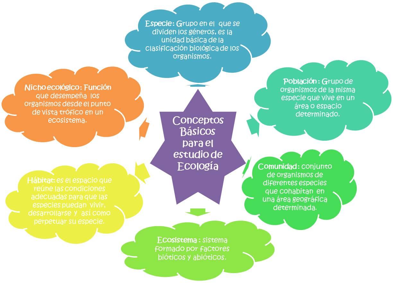 Conceptos básicos para el estudio de la Ecología